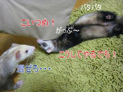 19.9.15.14.jpg