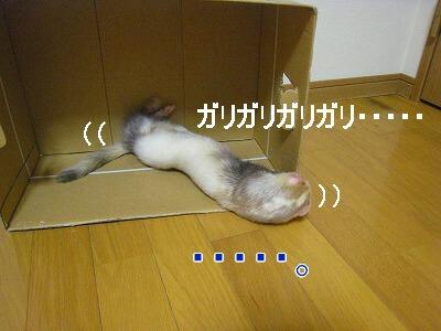 19.9.3.1.jpg