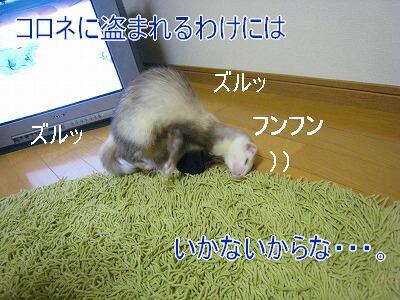 19.9.5.6.jpg