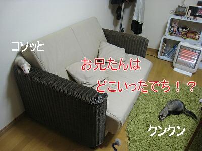 2007.3.18.1.jpg