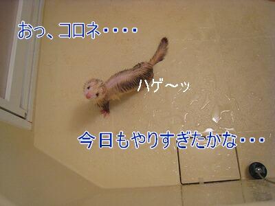 2007.3.22.5.jpg