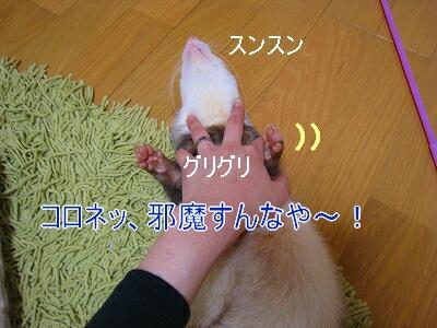 2007.3.24.15.jpg