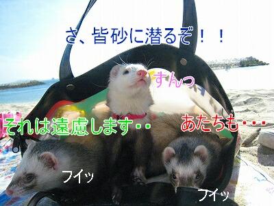 IMG_5269[1]