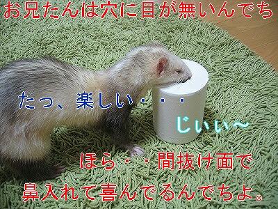 IMG_2520.jpg