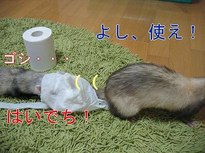 IMG_2524.jpg
