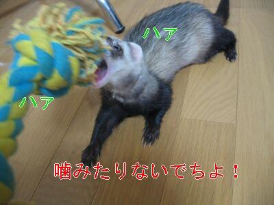 IMG_3092.jpg