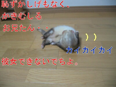 IMG_3250.jpg