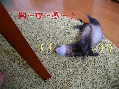 IMG_3586.jpg
