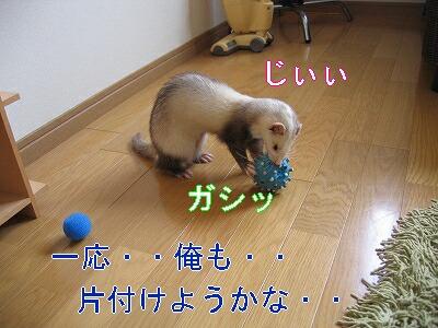 IMG_3600.jpg