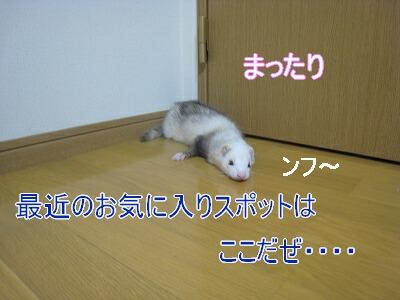 IMG_3944.jpg