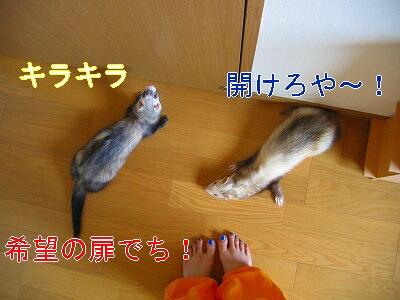 IMG_4022.jpg