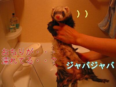 IMG_4091.jpg