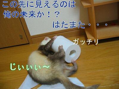 IMG_4272.jpg