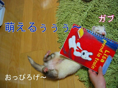 IMG_5165.jpg