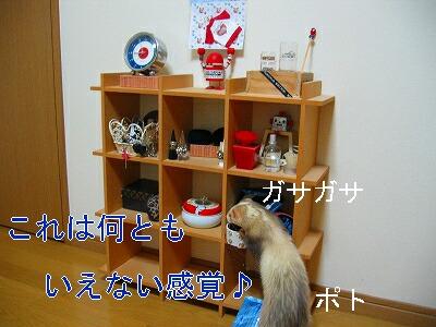IMG_6116.jpg