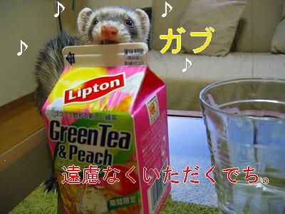 IMG_6143.jpg