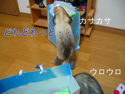 IMG_6173.jpg