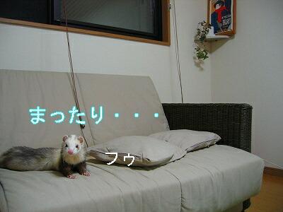 IMG_6360.jpg