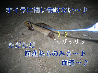 IMG_7083.jpg