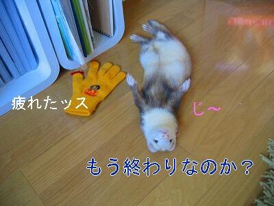 IMG_7169.jpg