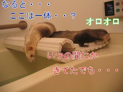 IMG_7429.jpg