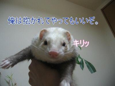 IMG_8054.jpg