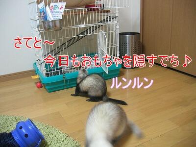 IMG_8350.jpg