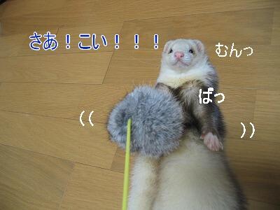 IMG_8443.jpg