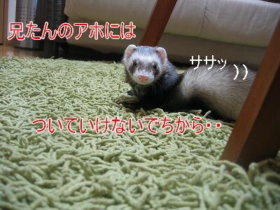 IMG_8580.jpg