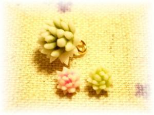 CIMG4246_edited.jpg