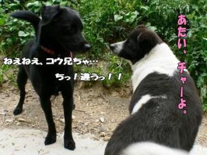 20060502001636.jpg