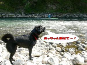 yoohijikawa.jpg