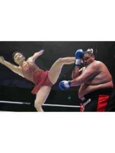 異種格闘技戦