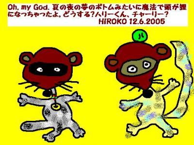 12-6-05-tanuki.jpg