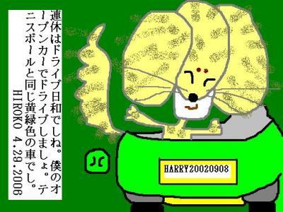 4-29-06-car.jpg