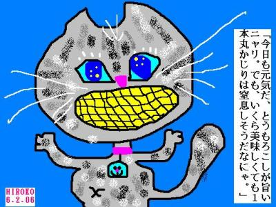 6-1-06-corn.jpg