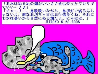 6-29-06-song.jpg