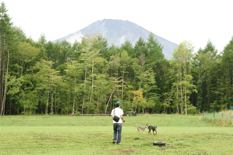 富士山が目の前に見えるドッグラン