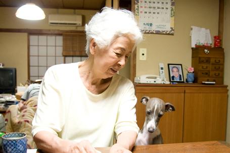 イタグレ小太郎とおばあちゃん
