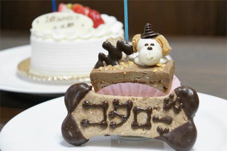小太郎のバースデーケーキ