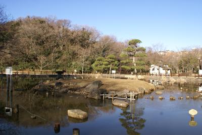 イタグレ小太郎が散歩する公園