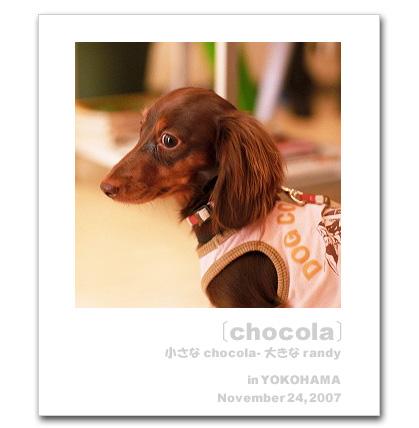 071124chocola