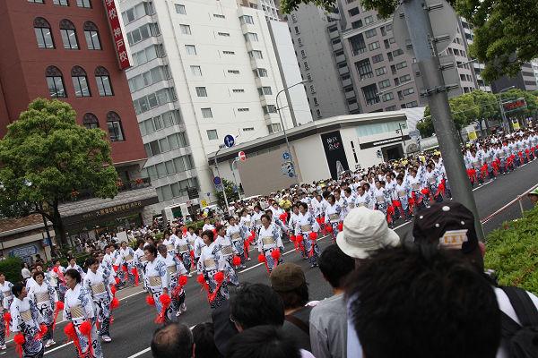 神戸まつり2008_5