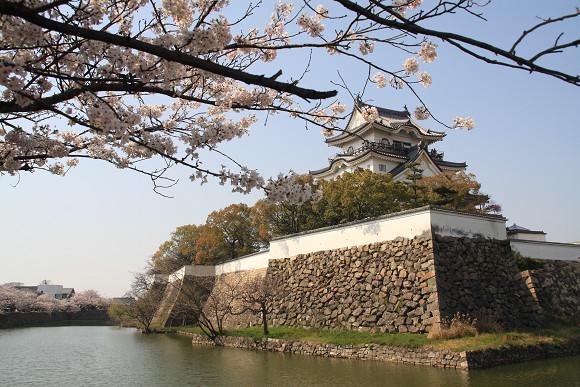 桜_03_3