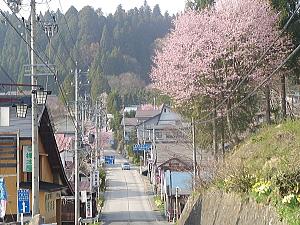 kotori_08_05_01_2.jpg