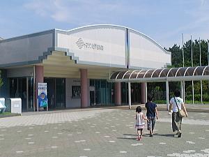 kotori_08_09_03_1.jpg