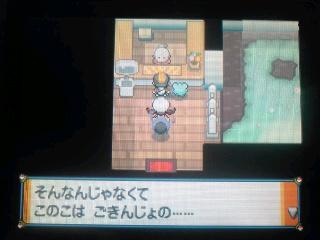 pokem3.jpg