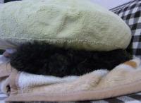 ハンバーグ犬