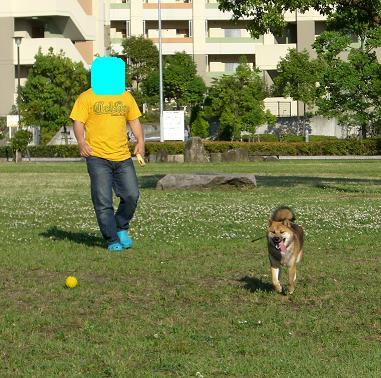 トーチャンと散歩2
