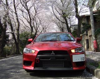 2008_0303桜0002_小